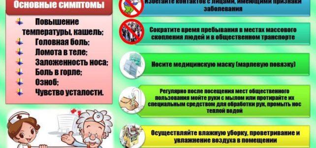 Грамотная профилактика гриппа