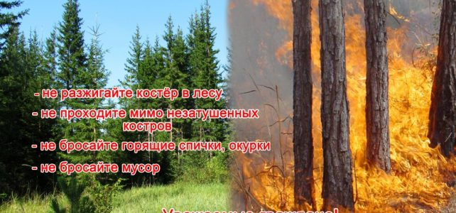 «Береги лес от огня»
